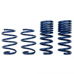 Track Lowering Springs